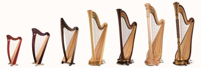 Different Harp Types With The String Number
