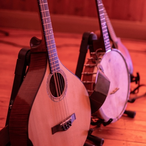 There Are Some Differences Between mandolin and banjo